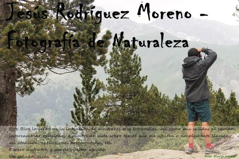 Jesús Rodríguez Moreno - Fotografía de Naturaleza