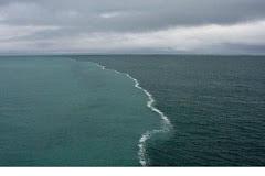 Rencontre de 2 mers au Danemark!