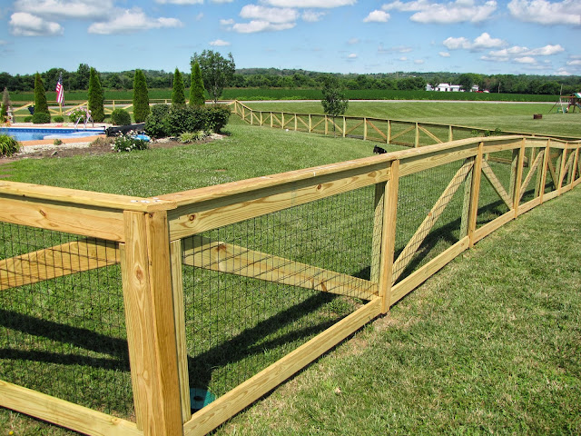 Backyard Dog Fence Ideas : home happy home Fencing in our backyard part 2