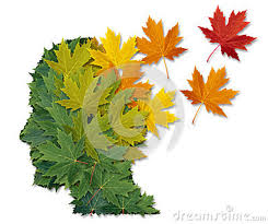 Image from dreamstime.com