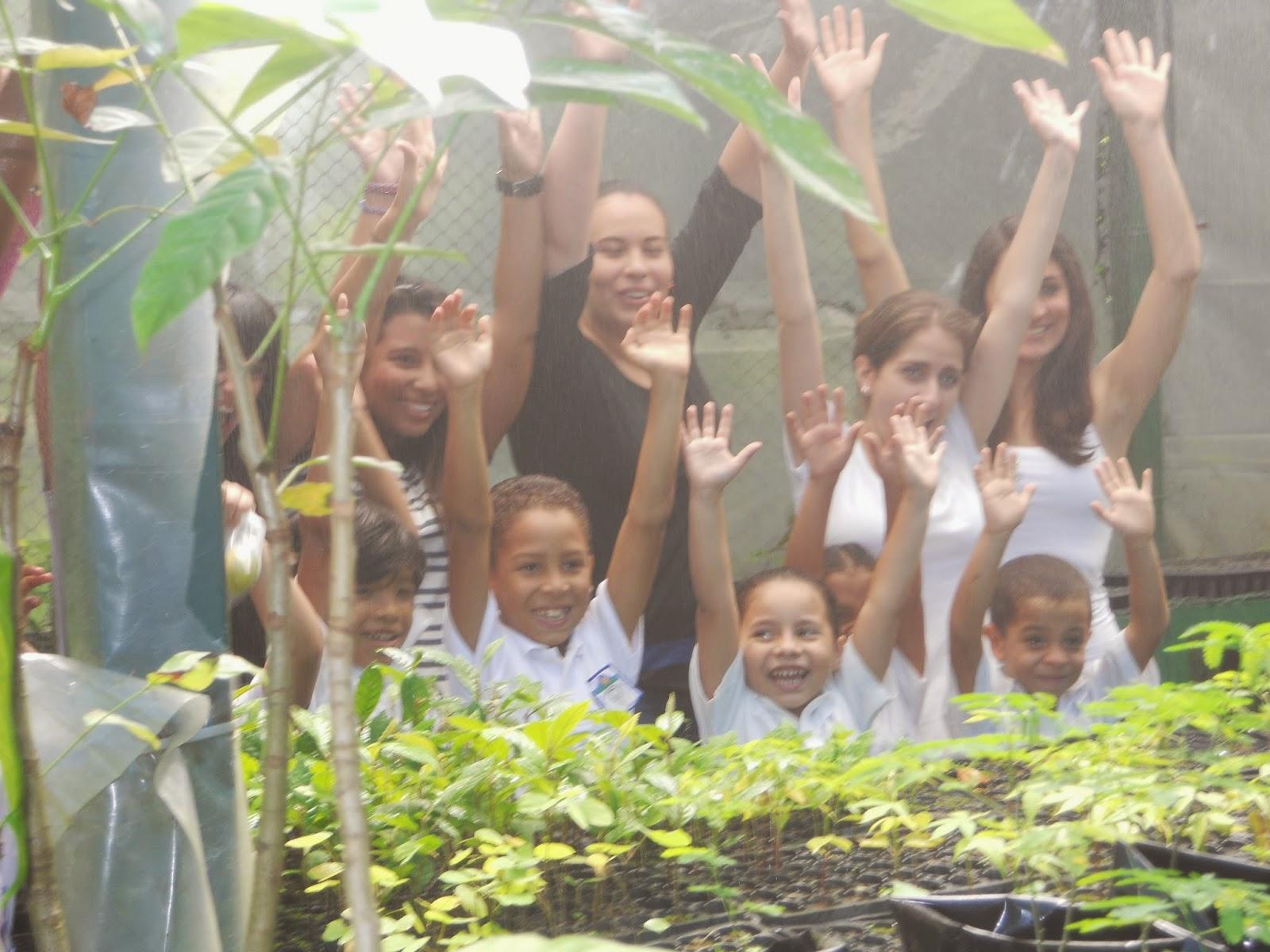 Proyecto vila universidad metropolitana ni os de la for Proyecto de vivero municipal