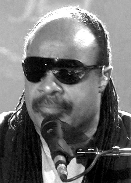 Stevie Wonder attempts to kill black woman? - DailyKenn.com
