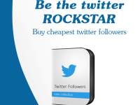 cheap twitter followers
