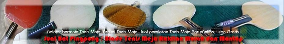Jual Bat Pingpong  Blade Tenis Meja Rakitan Murah dan Mantap. hand made blade table tennis