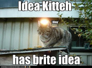 Internet Tips And Advice Sites Internet Tips And Advice Sites funny pictures cat has an idea