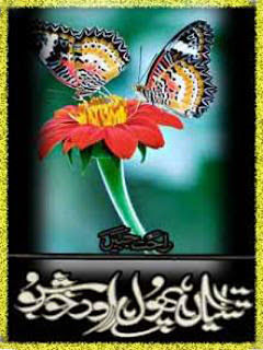 Titliyan Phool Aur Khushbu By Rahat Jabeen complete in pdf