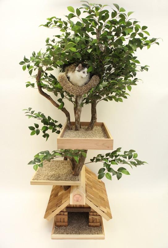 arbre a chat zen ii