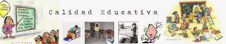 Calidad educativa y sus distintos significados.