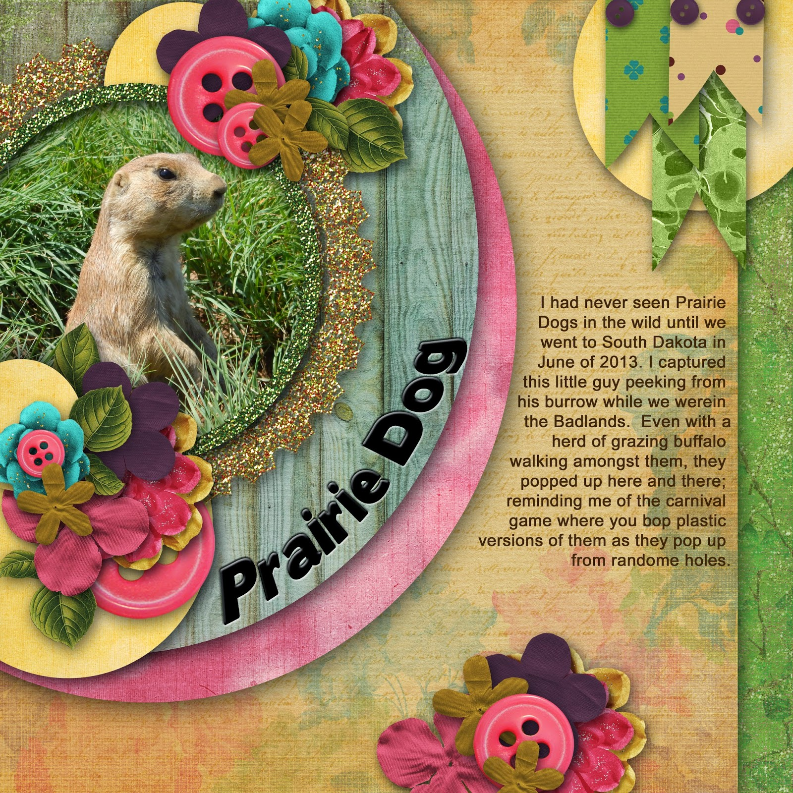 http://1.bp.blogspot.com/-f3NzTw04SbE/VCCKqblxKxI/AAAAAAAAA2c/9_NTDZlnVLA/s1600/Prairie%2BDog.jpg