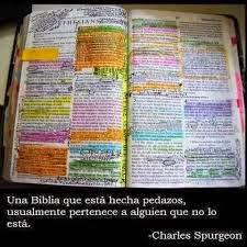 Frases Para Pensar: Una Biblia Que Está Hecha Pedazos Usualmente Pertenece A Alguien Que No Lo Está