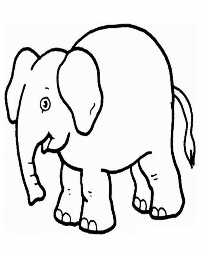 ... tentang gajah silahkan dipilih gambar di bawah untuk mewarnai gajah