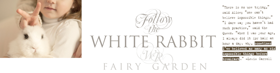 WHITE RABBIT garden