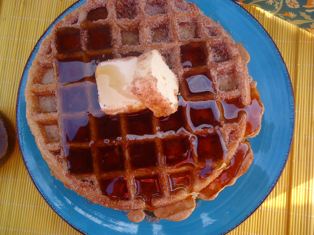 Churro Waffles | 25 Inventive Waffle Iron Recipes To Make With Your Waffle Maker