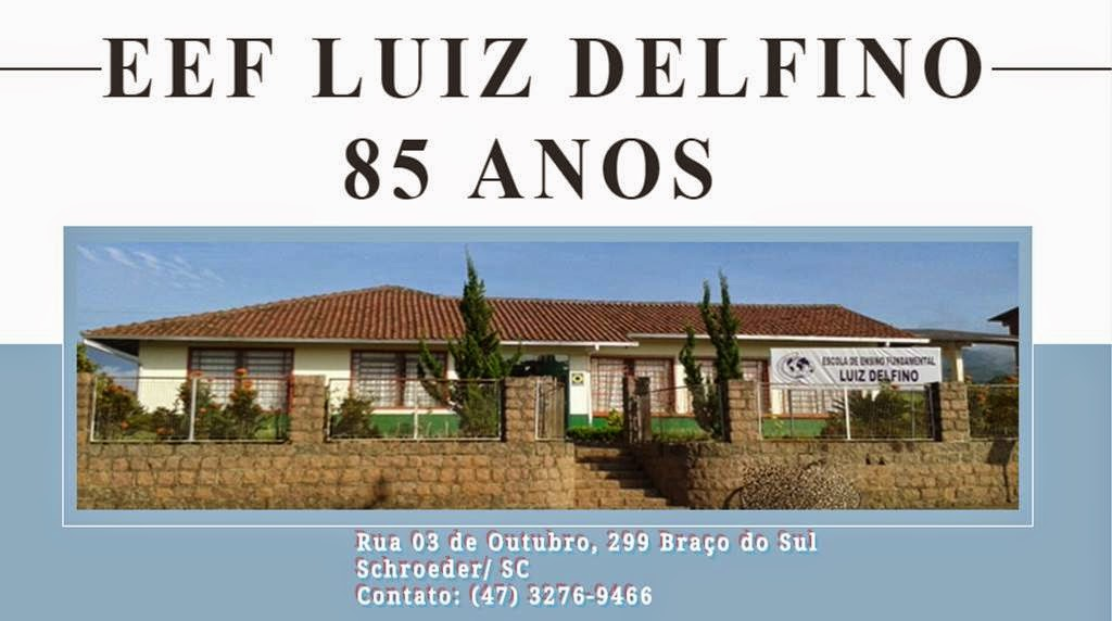 EEF Luiz Delfino - Schroeder