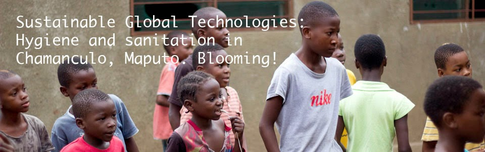 Sustainable Global Technologies: Hygiene and sanitation in Chamanculo, Maputo. Blooming!