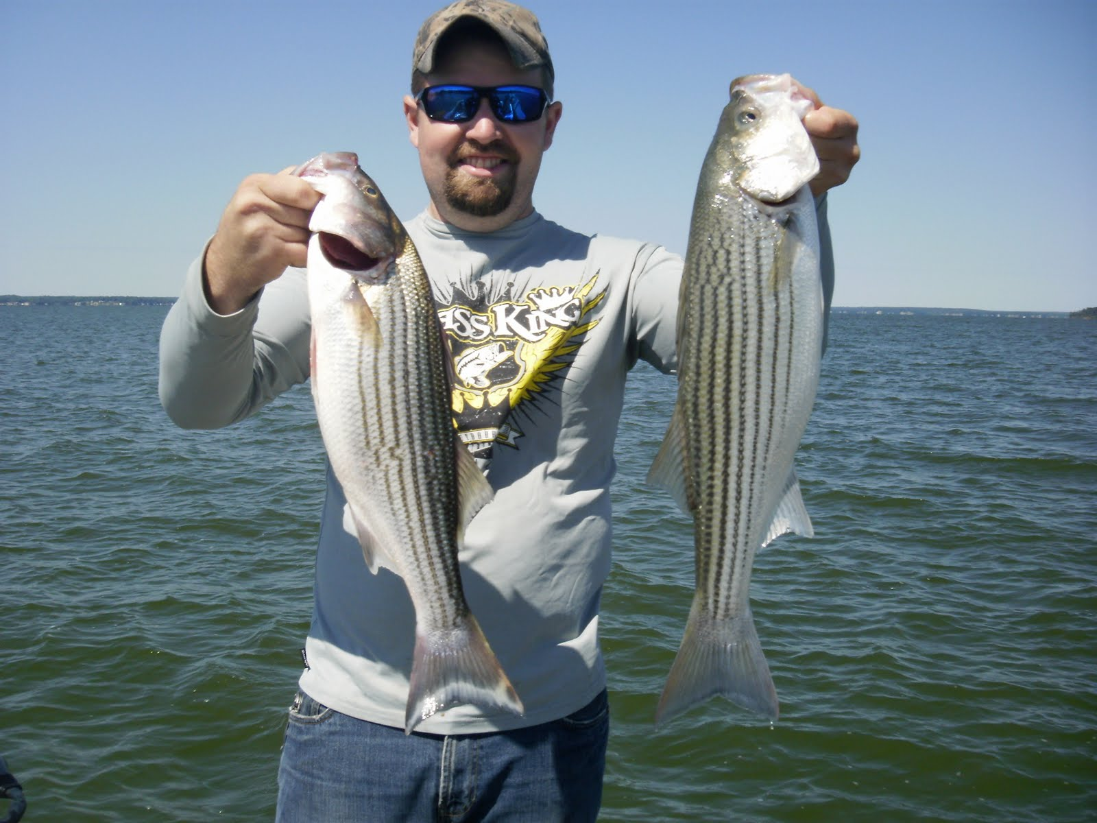 Lake livingston stripers freshwater reports texas for Lake livingston fishing report