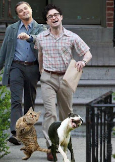 Funny Picture - Harry Potter Daniel Radcliffe Leonardo Di Caprio