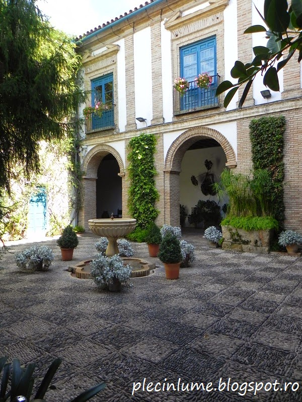 Patio in Palacio da Viana