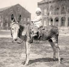 Jessus on donkey