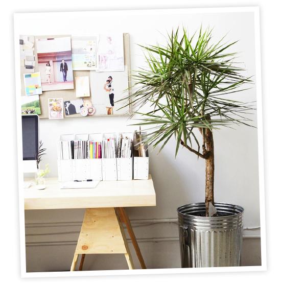 Perfect Online interior design service by My Paradissi. Photo ©Laure Joliet 550 x 560 · 204 kB · jpeg