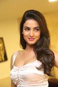 Sonal Chauhan sizzling photo shoot-thumbnail-20