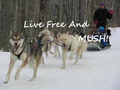 Live Free And MUSH!