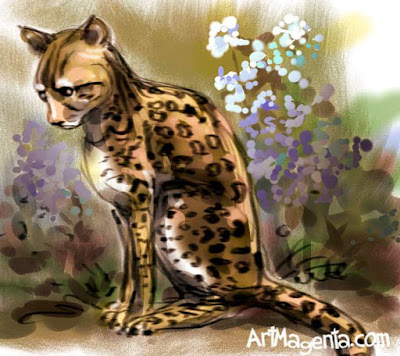 Ocelot cat by ArtMagenta
