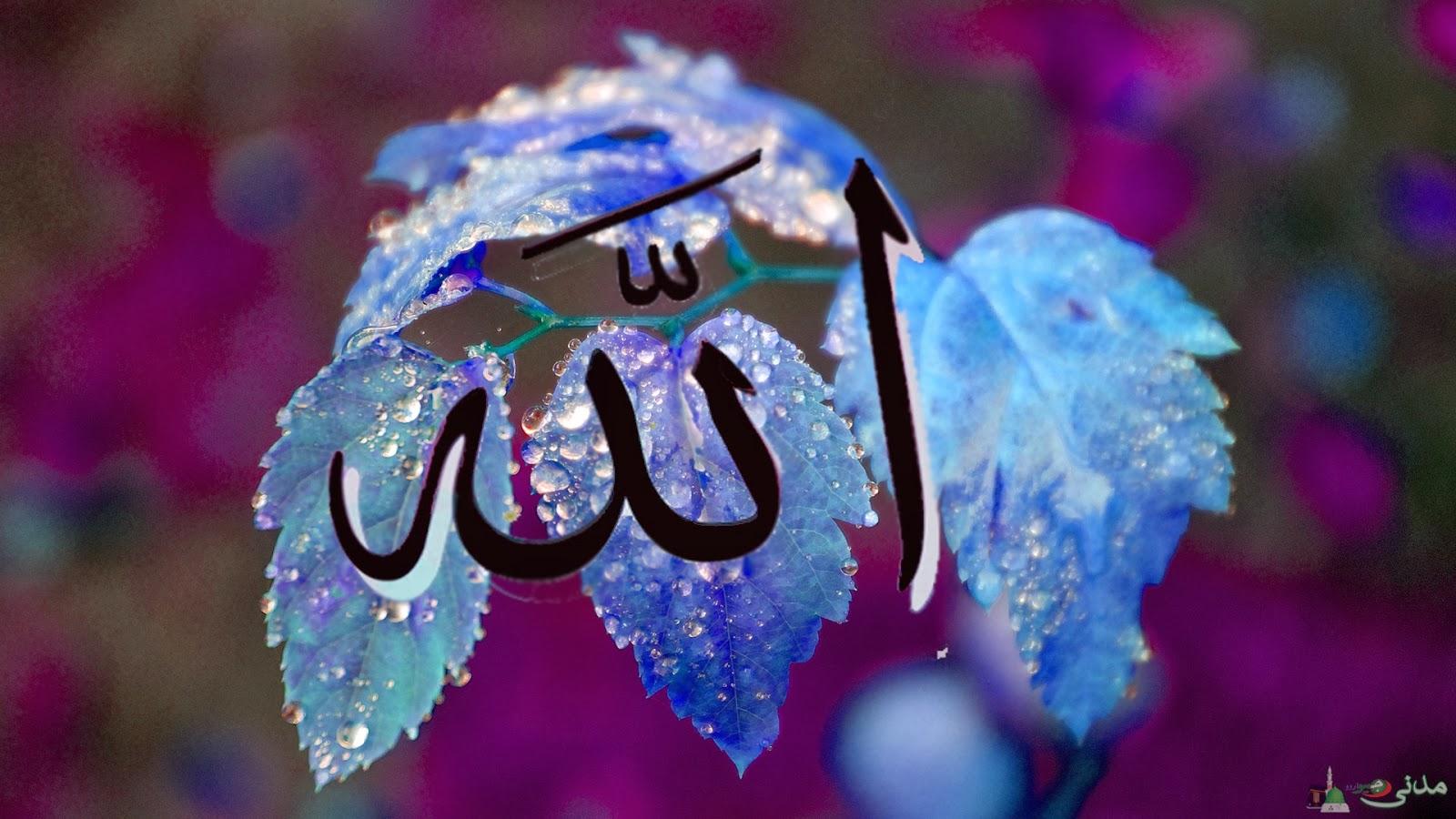 religion islam information beautifull wallpaper s allah muhammad