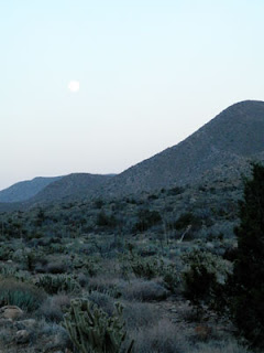 Full Moon in the Desert, Photo by Kaliani Devinne, Copyright 2013