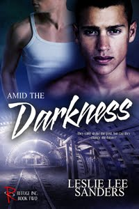 Amid the Darkness (Refuge Inc., Book 2)
