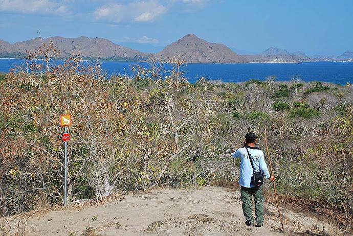 Panorámica de la isla de Komodo