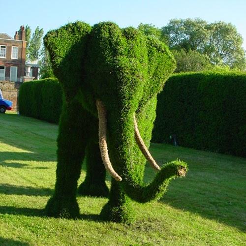 Arte y jardiner a dise o de jardines arte topiario for Diseno de jardines 3d 7 0 keygen