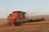 Trust Agriculture