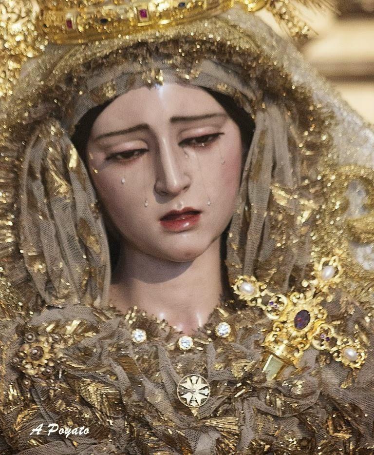 Durante los días 7 y 8 de diciembre, la Hermandad Sacramental de Santa Victoria y Cofradía de Nazarenos del Santísimo Cristo de la. - IMG_7107