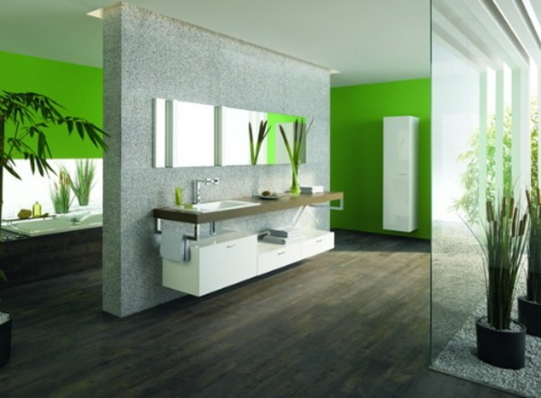 Evolution Home Design: Bathroom Color Ideas Design