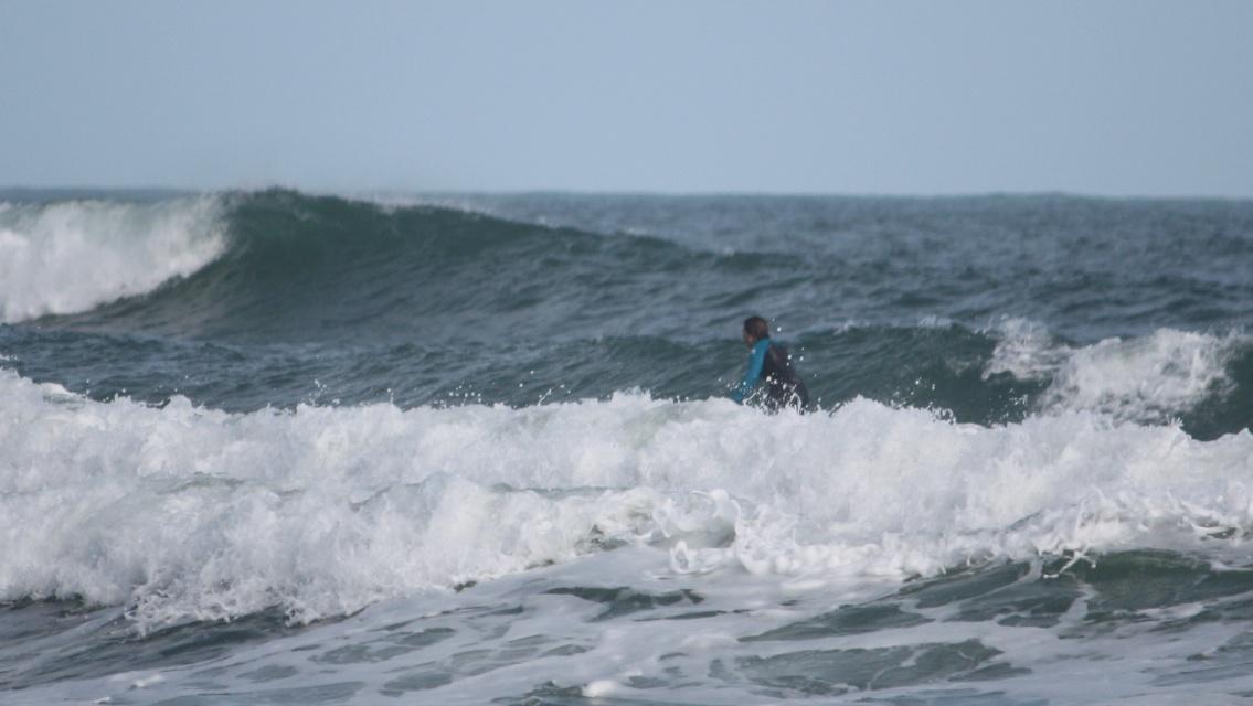 wave surfer machine