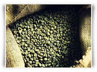 Green Coffee Beans for Roasting
