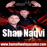 http://ishqehaider.blogspot.com/2013/11/shan-naqvi-nohay-2014.html