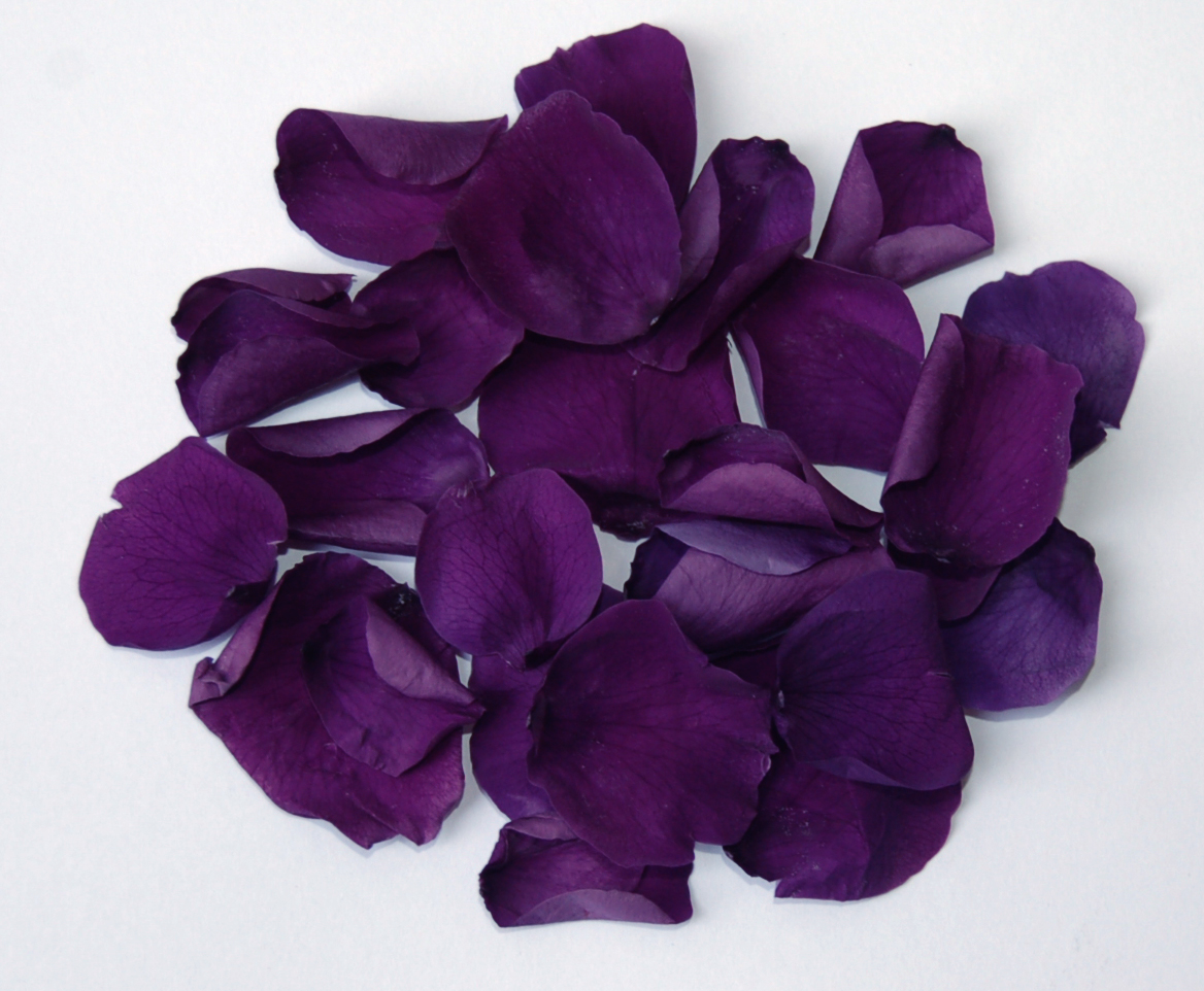 The confetti blog purple wedding themes ideas flowers and purple coloured rose petals form 750 a pint mightylinksfo
