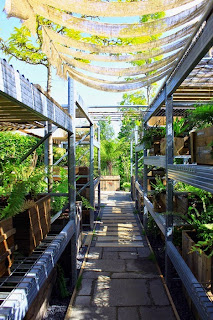Jardin n°24: Le collectionneur de l'ombre