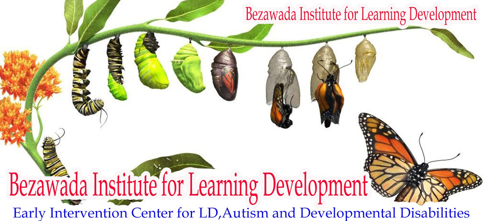 Bezawada Institute for Learning Development