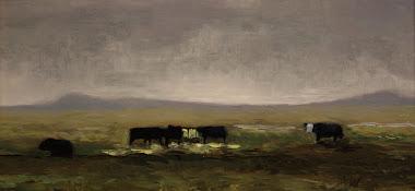 cows 6x12