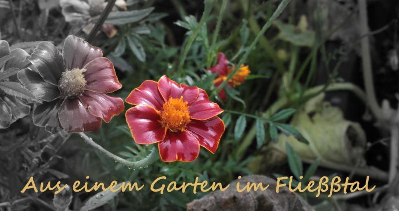 Aus einem Garten im Fließtal