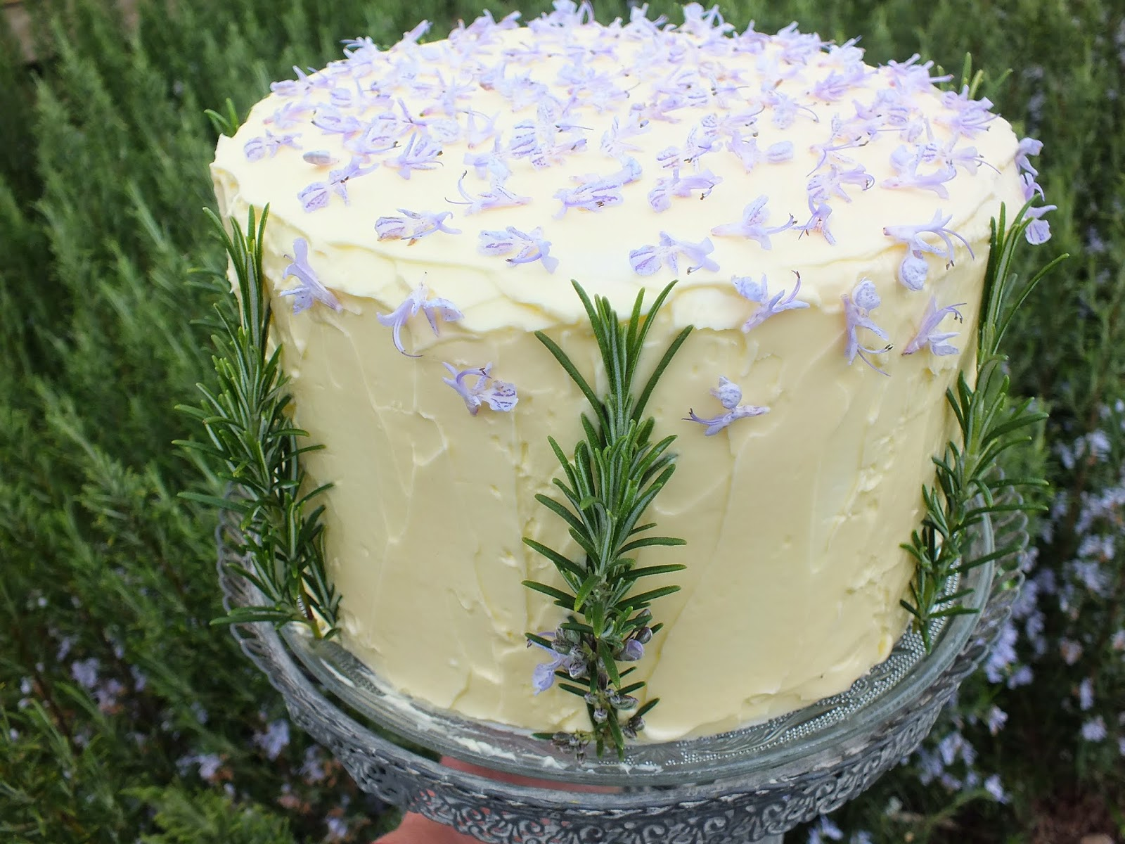 Edible flowers: Rosemary Cake