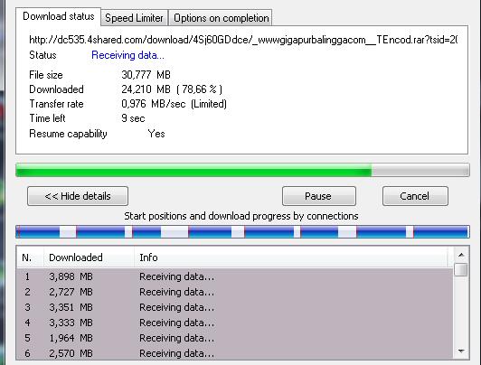 IDM 6.21 Build 19 Crack