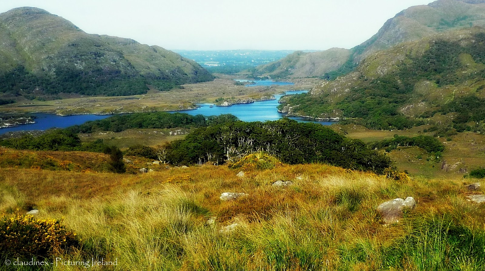 killarney national park Killarney national park, killarney: see 6,341 reviews, articles, and 3,078 photos of killarney national park, ranked no3 on tripadvisor among 121 attractions in killarney.