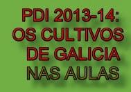 Proxecto Documental 2013-14