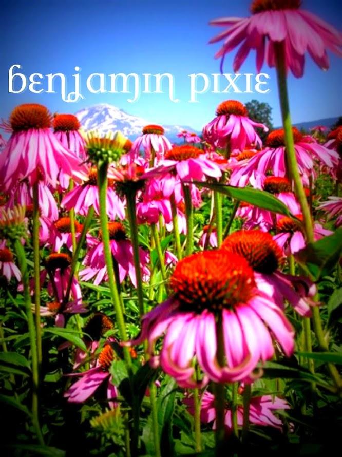 Benjamin Pixie