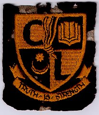 Court Lane School Badge