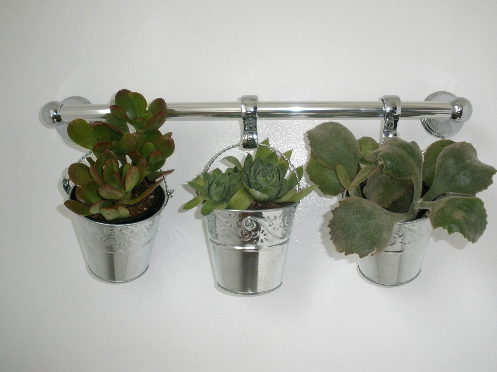 Giveaway new uses for bathroom hardware respaced portland - Houseplants for the bathroom ...